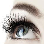 Wimpernverdichtung|Wimpernverlängerung|Wimpernextensions|LuxusLashes™|Lashstylist|Nerzwimpern|Seidenwimpern|synthetische Wimpern|Refill Wimpern|Naturwimpern|